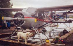 Alaska lodge by plane
