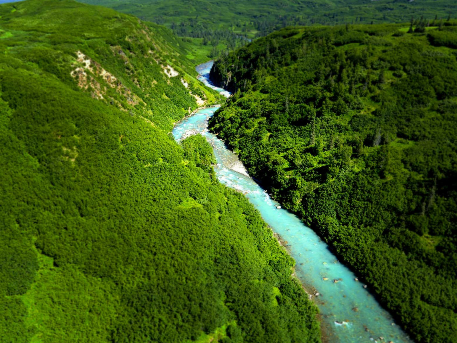 Aerial view of a clear blue river in the Tordrillo Mountains surrounded by green trees.