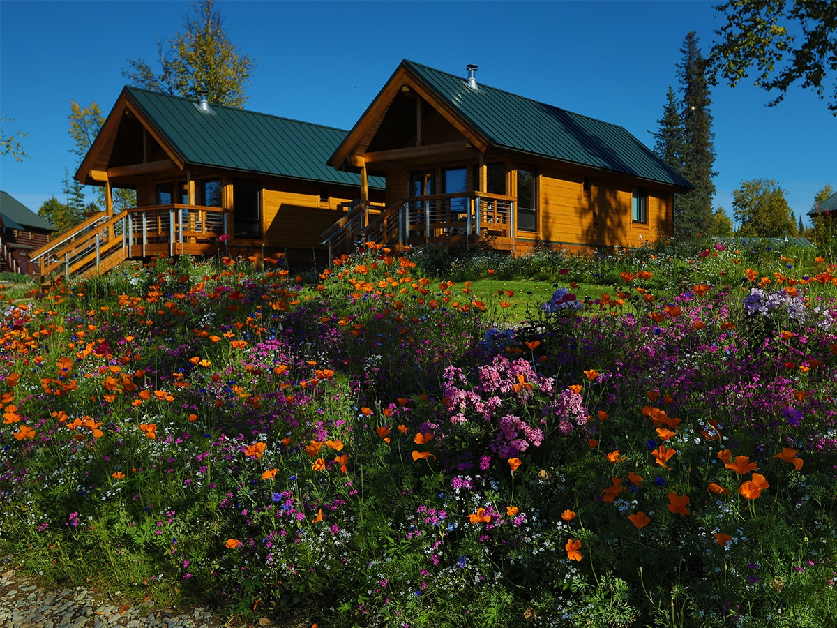 Two private cabins with a blue sky and wild flowers growing in the foreground.