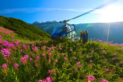 A helicopter lands on a gorgeous mountainside in the Tordrillo Mountains, Alaska.